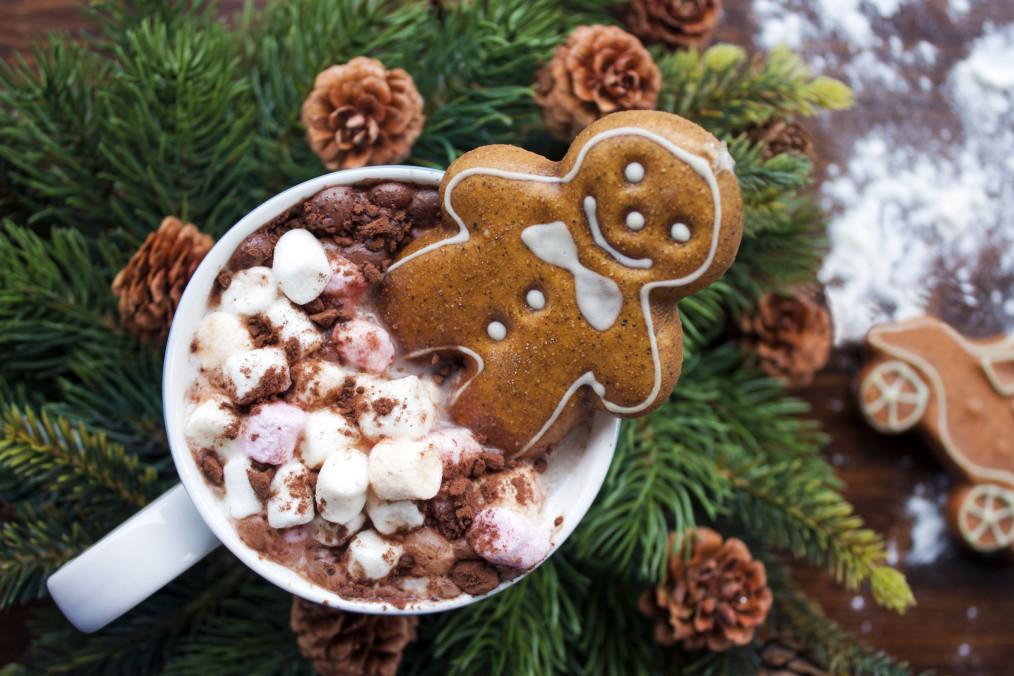 koupa kakao sokolata biskoto