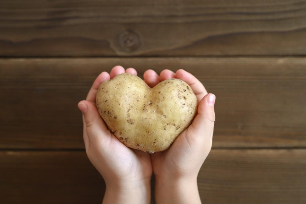 patata kardia